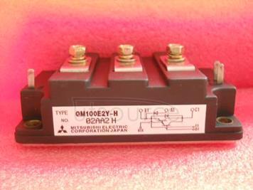 QM100E2Y-H
