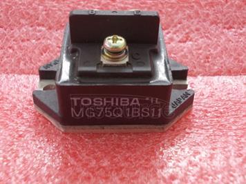 MG75Q1BS11