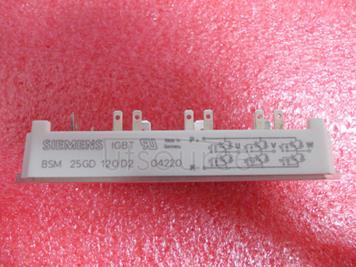 BSM25GD120D2