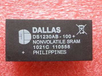 DS1230AB-100