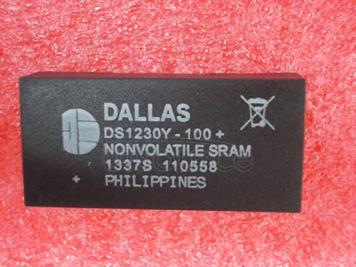 DS1230Y-100