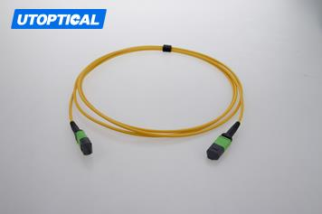 3m (10ft) MTP Female to Female 12 Fibers OS2 9/125 Single Mode Trunk Cable, Type B, Elite, Plenum (OFNP), Yellow