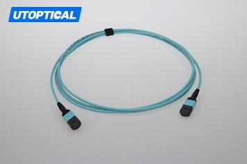 3m (10ft) MTP Female to MTP Female 12 Fibers OM3 50/125 Multimode Trunk Cable, Type B, Elite, LSZH, Aqua