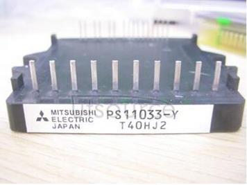 PS11033-Y1