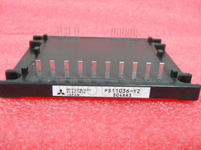 PS11036-Y2