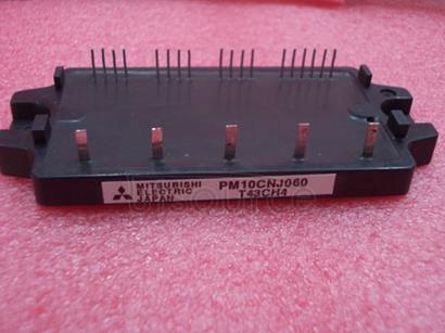 PM10CNJ060