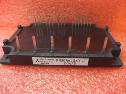 PM30RHC060-2
