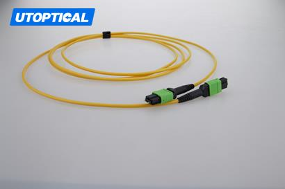 5m (16ft) MTP Male to MTP Male 12 Fibers OS2 9/125 Single Mode Trunk Cable, Type B, Elite, LSZH, Yellow