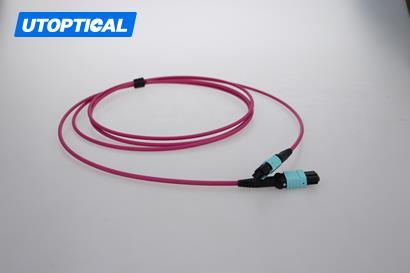 10m (33ft) MTP Female to Female 12 Fibers OM4 50/125 Multimode Trunk Cable, Type B, Elite, Plenum (OFNP), Magenta