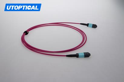 10m (33ft) MPO Female to Female 12 Fibers OM4 50/125 Multimode Trunk Cable, Type B, Elite, LSZH, Magenta