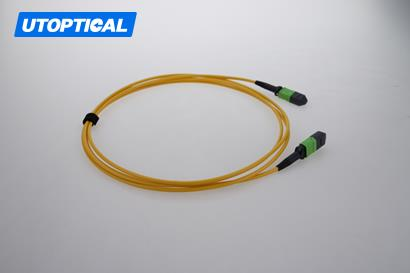 1m (3ft) MTP Female to Female 12 Fibers OS2 9/125 Single Mode Trunk Cable, Type A, Elite, Plenum (OFNP), Yellow
