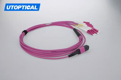 10m (33ft) MTP Female to 6 LC UPC Duplex 12 Fibers OM4 50/125 Multimode Breakout Cable, Type B, Elite, Plenum (OFNP), Magenta