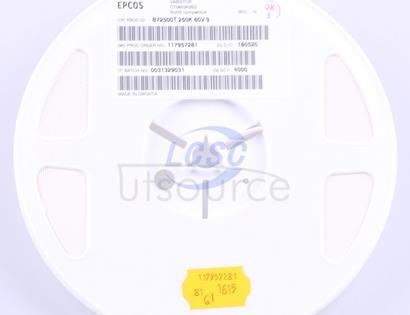 EPCOS B72500T0250K060