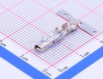 TE Connectivity 1-175196-2