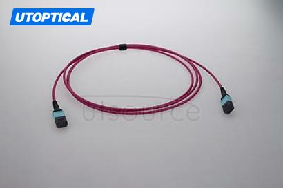 1m (3ft) MTP Female to Female 12 Fibers OM4 50/125 Multimode Trunk Cable, Type B, Elite, Plenum (OFNP), Magenta