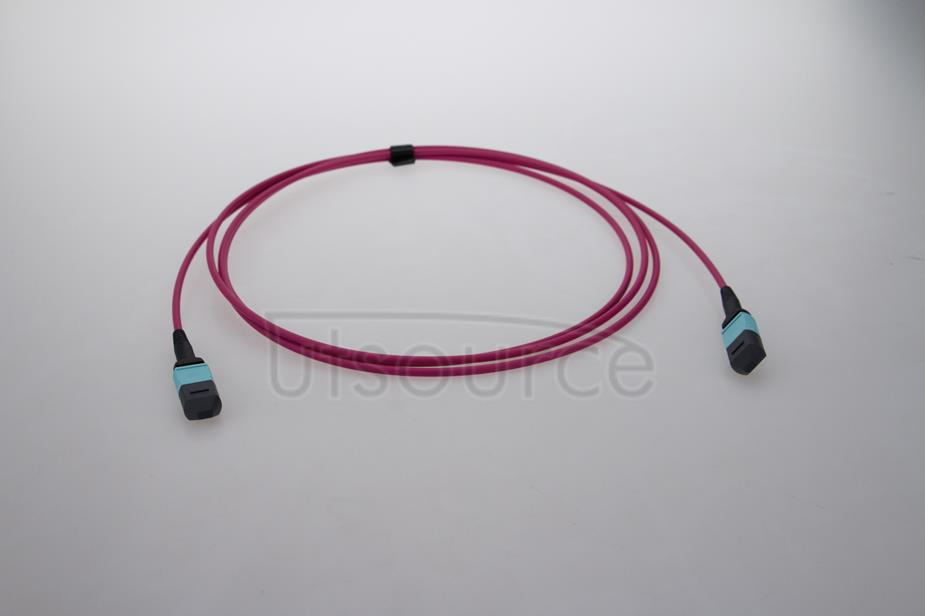 10m (33ft) MTP Female to MTP Female 12 Fibers OM4 50/125 Multimode HD Trunk Cable, Type A, LSZH, Magenta